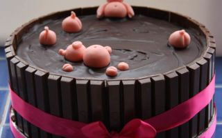 Новогодний шоколадный торт: предпраздничный мастер-класс