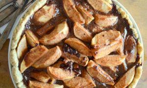 Шоколадная шарлотка с яблоками и какао: 3 рецепта