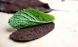 Как своими руками сделать шоколадные листья для торта