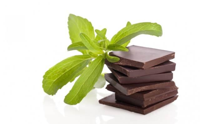 Листья стевии и шоколад